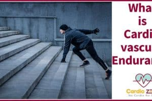 What Is Cardiovascular Endurance Large