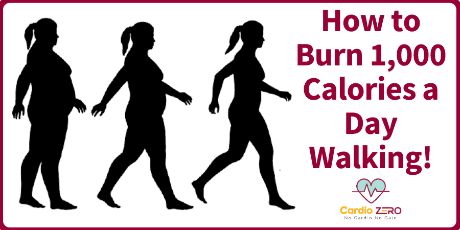 How to Burn 1,000 Calories a Day Walking!